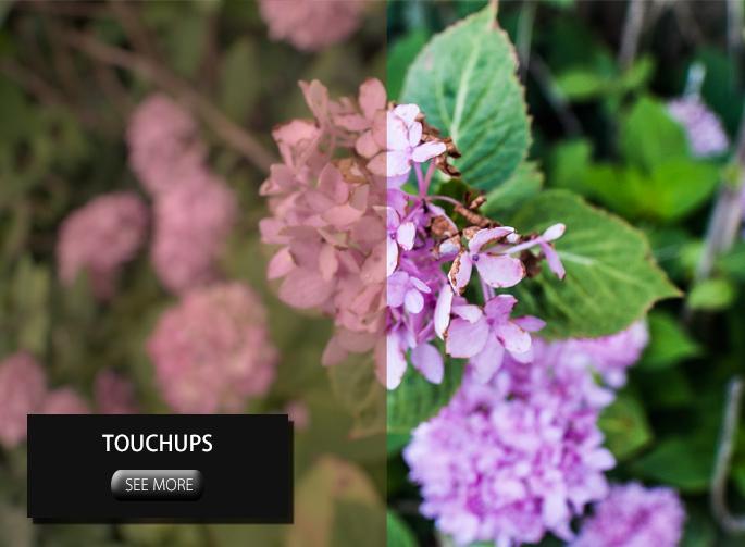 touchups