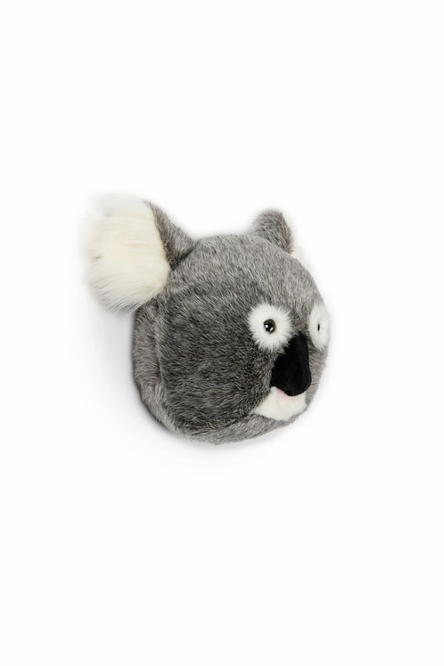 Tête Koala Wild and Soft