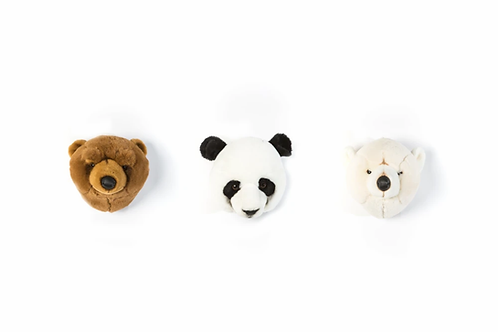 Coffret mini tête Ours Wild and soft