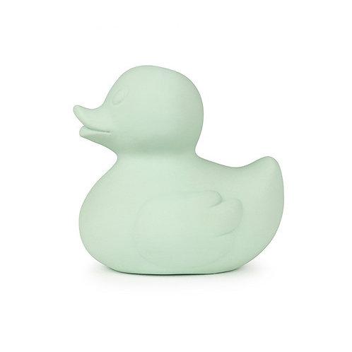 Elvis the duck mint Oli & carol