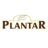 plantar edt.png