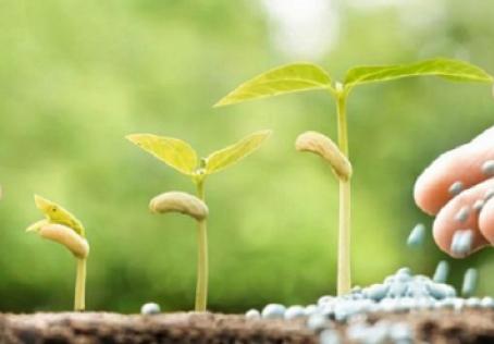 Confaz renova Convênio 100/97 até dezembro de 2025 com alterações para fertilizantes