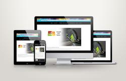 Insight into Talent website