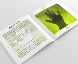 Treasure Trees Book