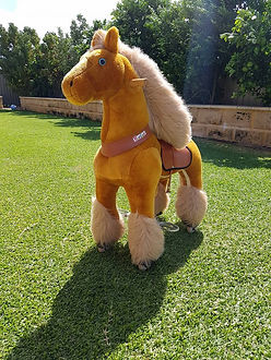 ponycycle pony perth a bonza bounce bouncy castle hire