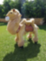 ponycycle camel perth a bonza bounce bouncy castle hire