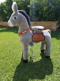 ponycycle donkey perth a bonza bounce bouncy castle hire