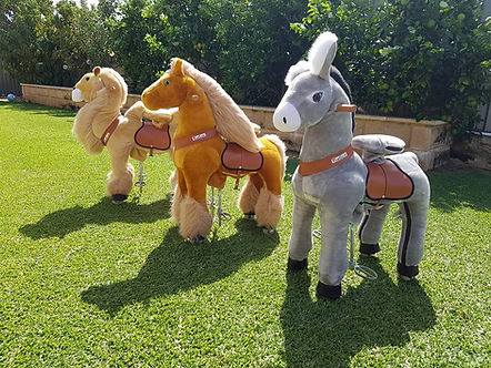 ponycycles a bonza bounce perth best bouncy castle hire