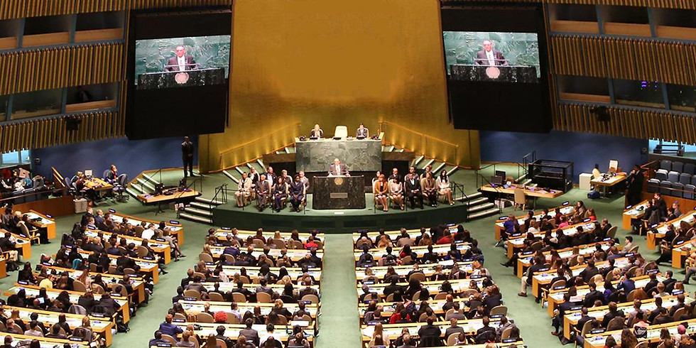 Yes to UN 2020, Training for Model UN competition