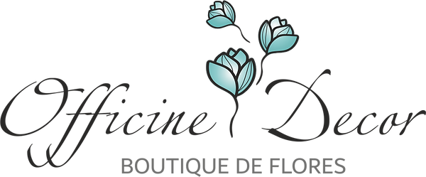 BOUTIQUE DE FLORES.png