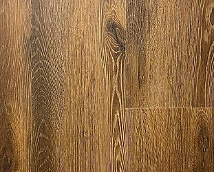 Sandbank Oak.jpg