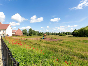 ballingdon-meadows-10.jpg