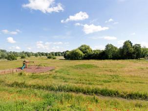ballingdon-meadows-5.jpg