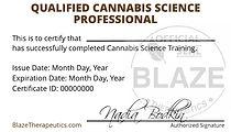 _Wallet Certificate Image.jpeg