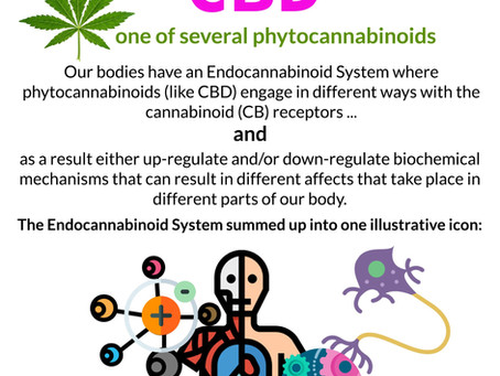 Our bodies were made for cannabinoids Debunked