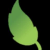 Blaze-leaf.png