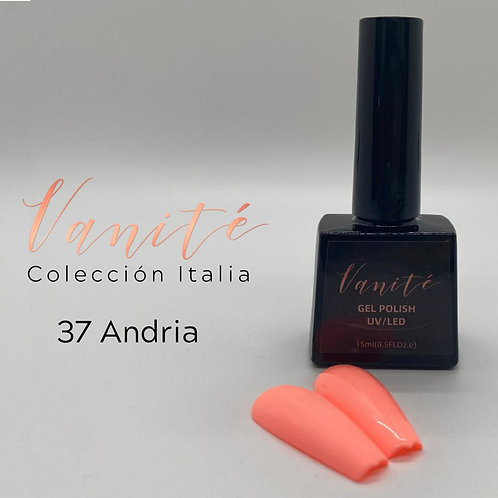 Vanité Italia Andria #37