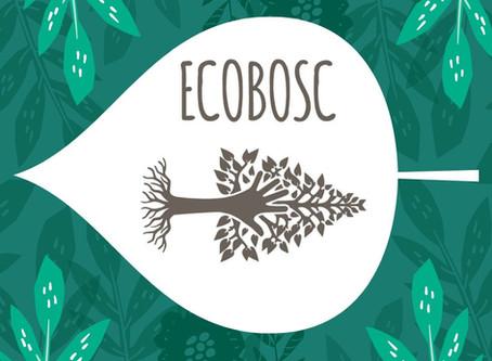 L'Ecobosc va agafant forma