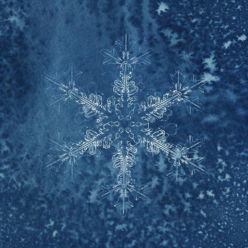 Série A Rainha da Neve 02