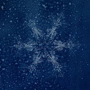 Série A Rainha da Neve 05