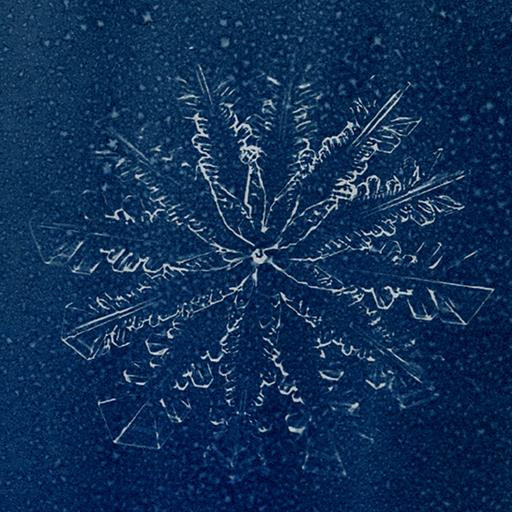 Série A Rainha da Neve 04