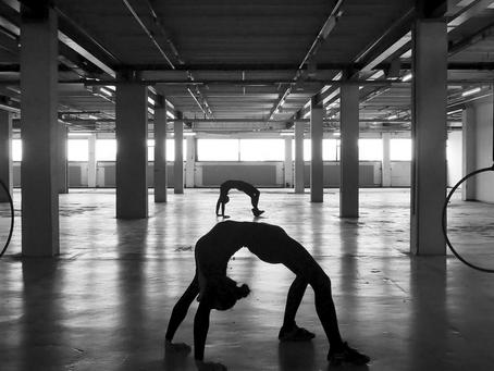 Speedy Spider by Paula Alvala & Margreet Nuijten