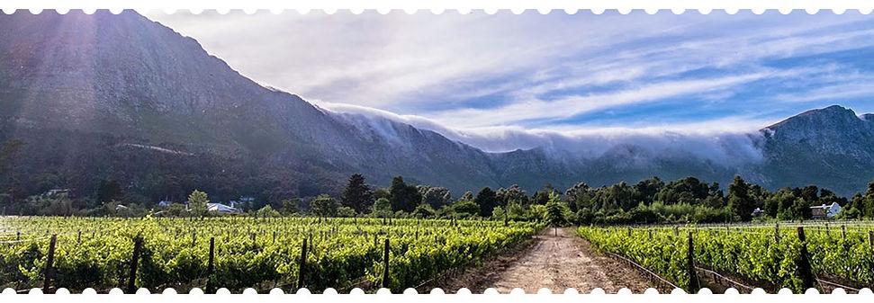 Vallée de Franschhoek
