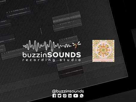 Partnership: Buzzin' Sounds x Patricia Shea Designs