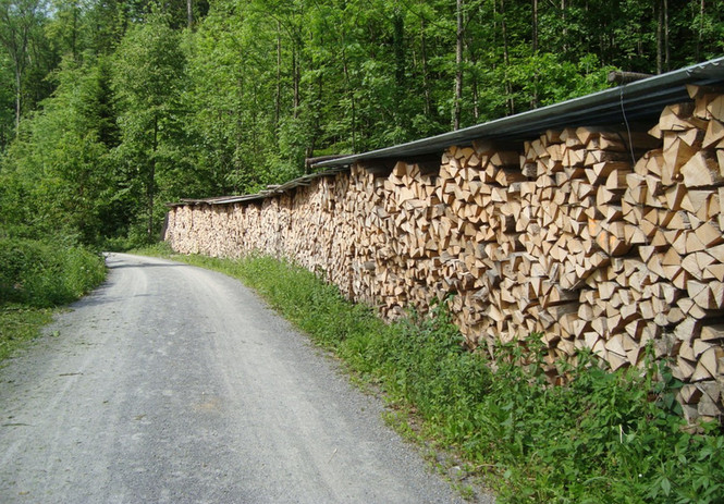 Brennholz.jpg