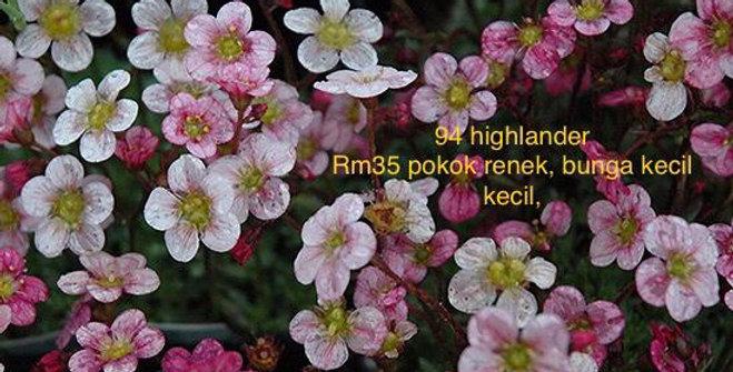 94 highlander