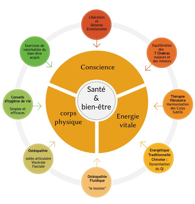 roue santé bien-être