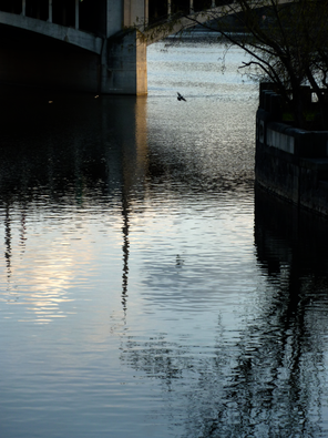 2011-04-03 river.png