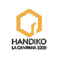 HANDIKO.png