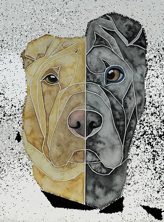 Ein Hundeportrait nach Fotovorlage von zwei Sharpeis