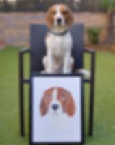 Tierportrait Pet Portrait Hundeportrait Acrylbild Hundebild, Kundenfoto, Beagle