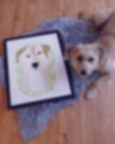 Tierportrait Pet Portrait Hundeportrait Acrylbild Hundebild, Kundenbild, Mischling