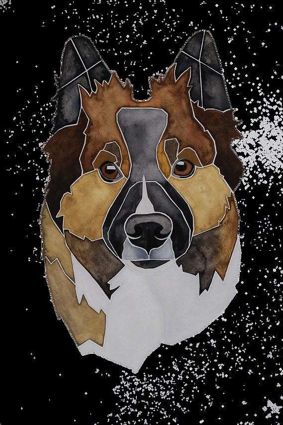 Ein Hundeportrait nach Fotovorlage von einem Elo