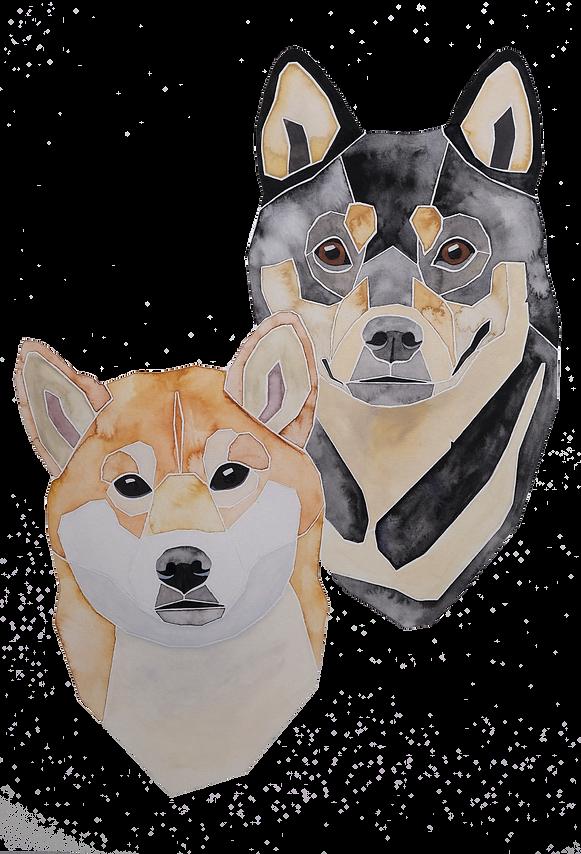 Ein Hundeportrait nach Fotovorlage von zwei Shiba Inus