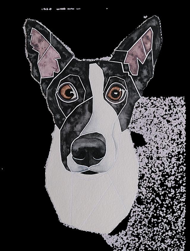 Ein Hundeportrait nach Fotovorlage von einem Mischling