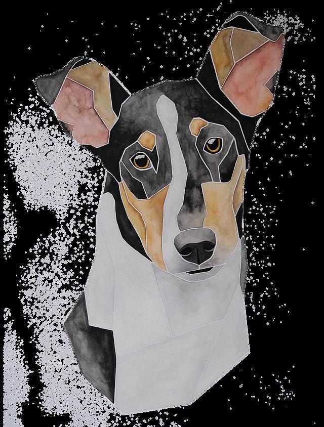 Ein Hundeportrait nach Fotovorlage von einem Kurzhaarcollie