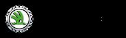 skoda-auto-logo-1024x312.png