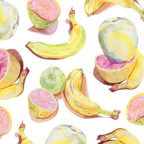 Fruit Study Drawing
