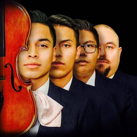 Acero Violines