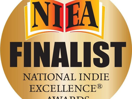Finalist  of Nationalist Indie  excellence Awards