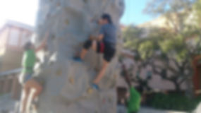 rock wall at ringling.jpg