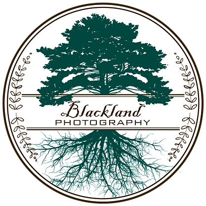 Blackland Photography Logo WHITE backgro