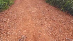 Estrada de Colônia Nova recebeu cascalhamento