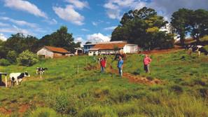 Emater e Secretaria da Agricultura de Saldanha Marinho realizam visitas