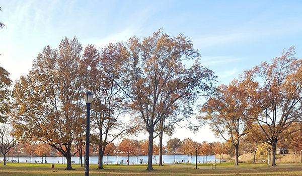 Baisley Pond Park (3).jpg