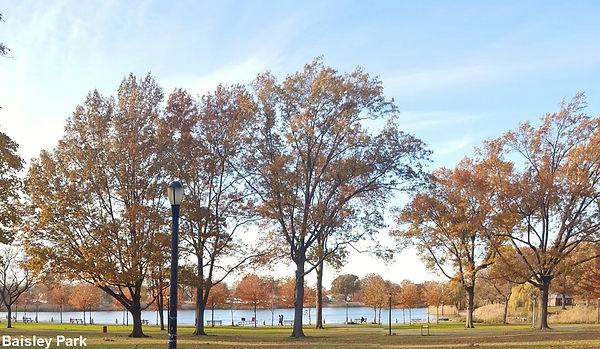 Baisley Pond Park (1).jpg